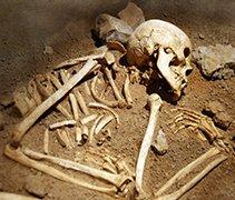 AMS dating bones